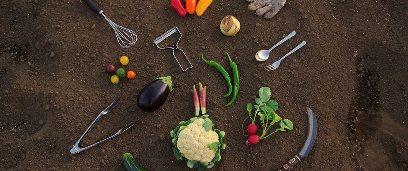 代々木上原「WE ARE THE FARM」のイメージ写真