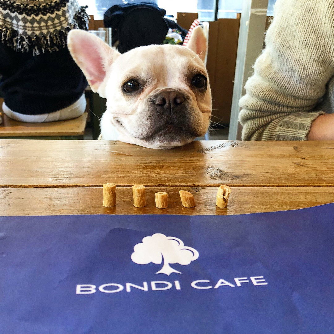 bondicafe2