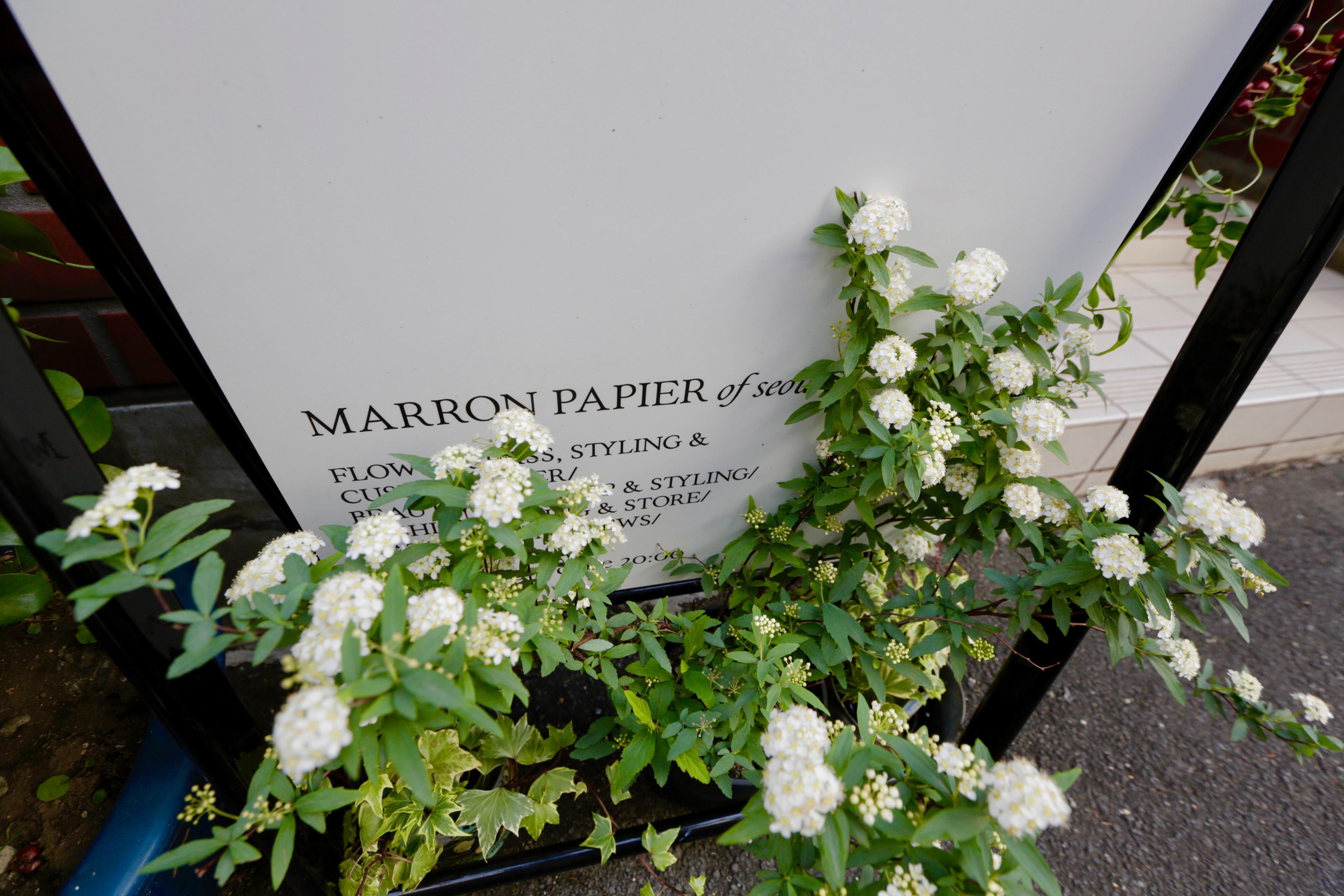 マロンパピエ,marronpapier,花屋,フラワースクール